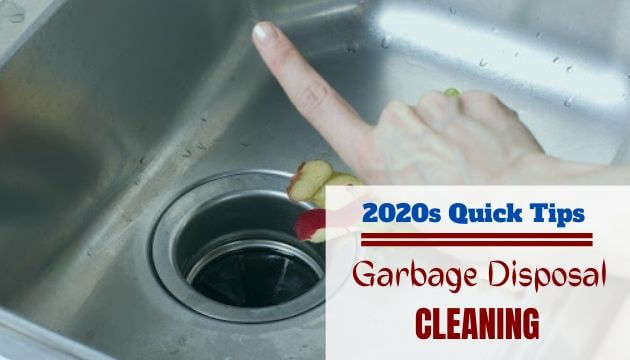 Garbage Disposal Cleaning